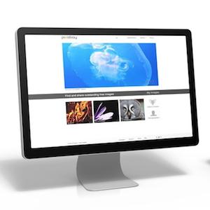 salon marketing website